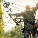 How to Buy the Best Hunting Bow for You